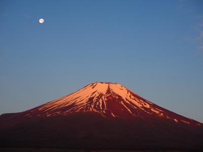 富士さんには月が良く似合う